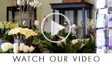 Wilmington Florist Video