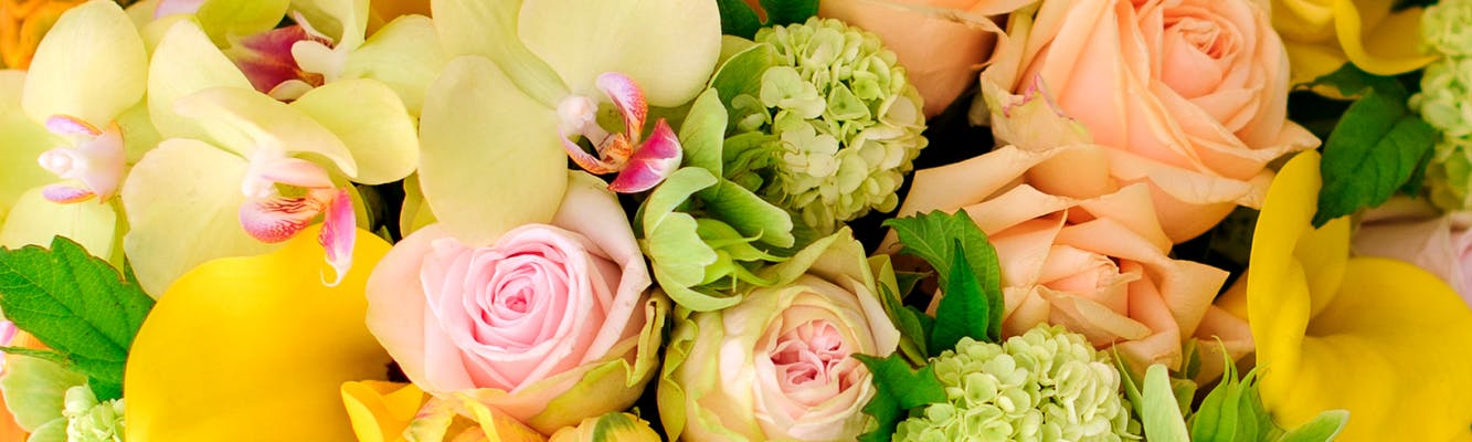 Wilmington Nc Same Day Flower Delivery Julias Florist