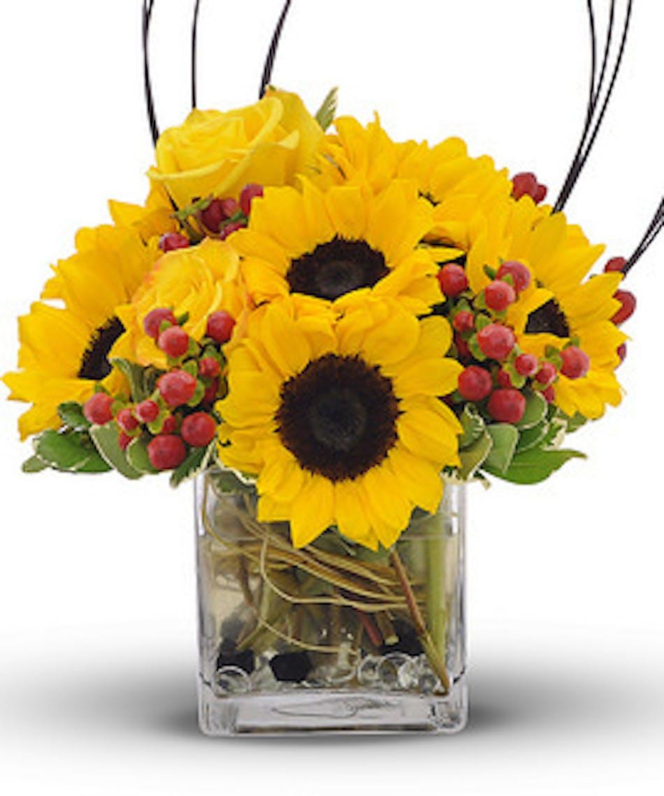 Sun and berries sunflower bouquet wilmington flower delivery izmirmasajfo