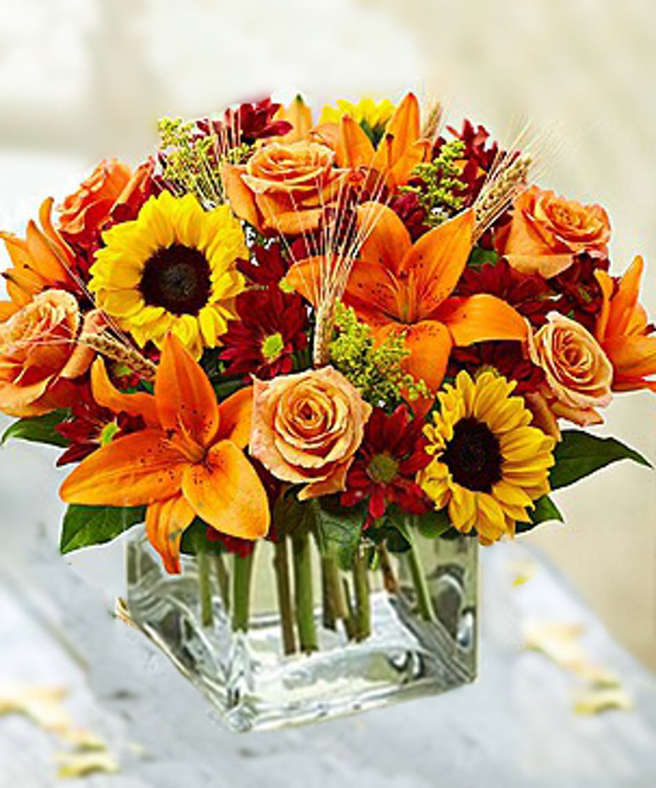 Autumn splendor cube wilmington fall flowers izmirmasajfo