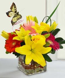 Bright yellow and red flowers in a clear glass cube vase with butterfly decoration.