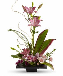 Square dish of pink asiatic lilies, cymbidium orchids, spray roses and greenery.