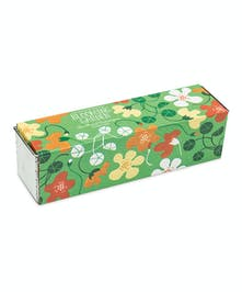 Tom Thumb Nasturtiums Kit