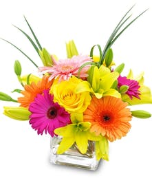 Orange, yellow and pink flowers in a clear glass cube vase.