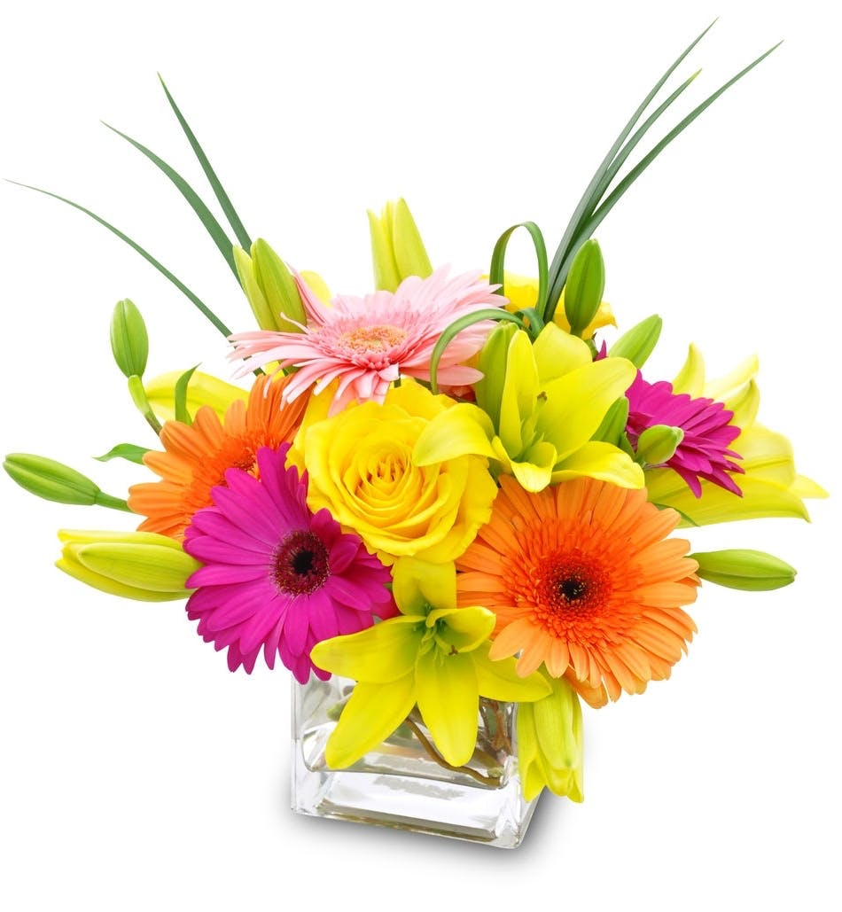 Youre the best julias wilmington nc florist orange yellow and pink flowers in a clear glass cube vase mightylinksfo