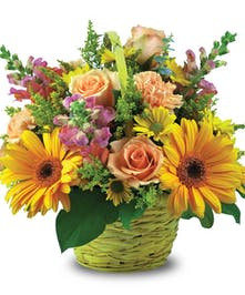 Yellow daisies, peach roses & purple snapdragons in a woven basket planter.