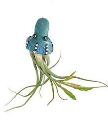 Octopus Air Plant Ornament