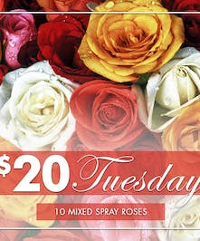 10 Assorted Spray Roses Wrapped