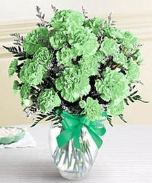 Green carnations in a glass vase tied with green ribbon.