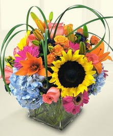 Sunflower, blue hydrangea, pink roses, greenery and daisies in a glass cube vase.