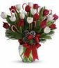 As shown - 20 tulips