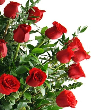 Four Dozen Red Roses In A Vase Wilmington Nc Flower Delivery