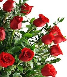 36 Long Stem Roses