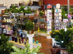 In addition to flowers and plants, Julia's offers a range of gifts and decorations