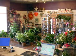 Take a step inside our bright, welcoming Wilmington showroom